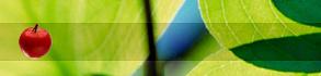 Монотрофное сыроедение